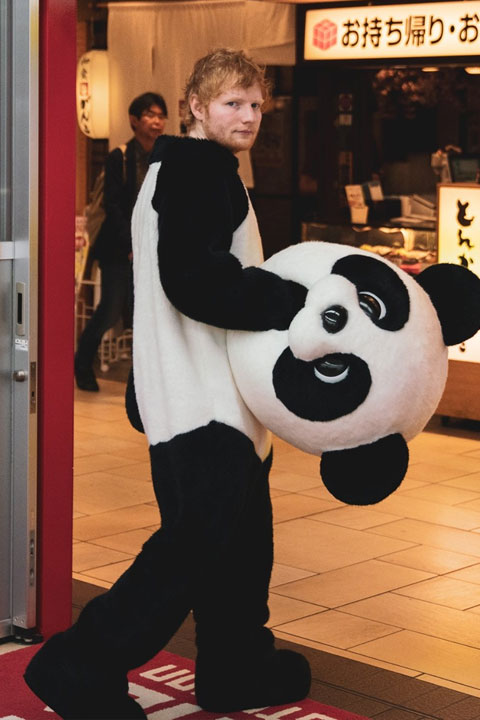 Ed Sheeran wearing panda costume and looking cute and hot. He is going into Chinese shop and looking at camera with anger.